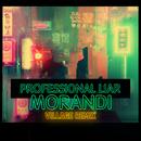 Professional Liar (Village Remix)/Morandi