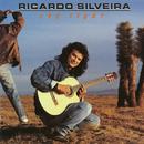 Sky Light/Ricardo Silveira