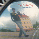 Can't You See/This Perfect Day