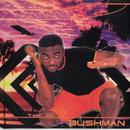 No 1 Else/Bushman