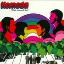What Makes It Go?/Komeda