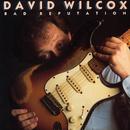Bad Reputation/David Wilcox