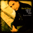 High, Wide And Lonesome/David Olney