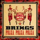 Polka, Polka, Polka (Club Mix)/Brings