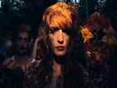 Dog Days Are Over/Florence + The Machine