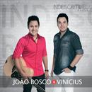 Indescritível (Live)/João Bosco & Vinicius