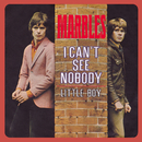I Can't See Nobody / Little Boy/The Marbles