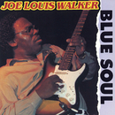 Blue Soul/Joe Louis Walker