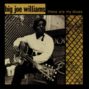 These Are My Blues (Live)/Big Joe Williams