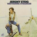 Wayfaring Stranger/Jeremy Steig