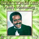 Colección de Oro: El Espectacular Andy Montañez, Vol. 1/Andy Montañez