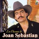 Las Chicanas De Joan Sebastian/Joan Sebastian