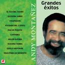 Grandes Éxitos/Andy Montañez