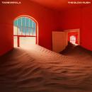 The Slow Rush/Tame Impala