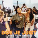 Doe Je Juist (feat. Priceless)/Ronnie Flex
