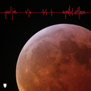 Superblood Wolfmoon/Pearl Jam