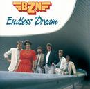 Endless Dream/BZN