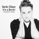 It's A Bitch! (Craigslist Song)/Seth Glier