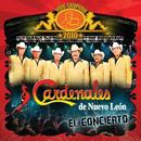 Vive Grupero El Concierto/Cardenales De Nuevo León (Live México D.F/2010)/Cardenales De Nuevo León