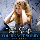 You're Not Sorry (CSI Remix)/Taylor Swift
