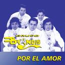 Por El Amor/Grupo Bryndis