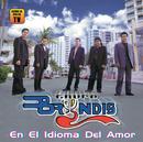 En El Idioma Del Amor/Grupo Bryndis