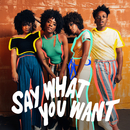 Say What You Want (I Like Who I Am) (feat. Josiah)/The New Respects