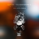 Mi-ai pus ceva în pahar (Vik Leifa Remix)/Liviu Teodorescu