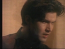 From The Hip (Stereo)/Lloyd Cole And The Commotions