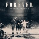 Forever (Garage Version)/Mumford & Sons