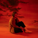To Tell The Truth I Can't Believe We Got This Far EP/Lewis Capaldi