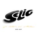 Wir werden uns wiedersehen - Best Of 2009-2013/Selig