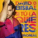 Si Tú La Quieres (Versión Tropical)/David Bisbal
