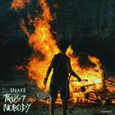 Trust Nobody/DJ Snake