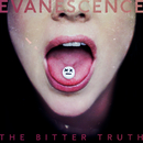 The Game Is Over/Evanescence