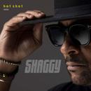 Hot Shot 2020/Shaggy