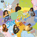 EMI Ice & Fire Mix/Various Artists