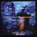Underneath/David Wilcox