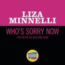 Who's Sorry Now (Live On The Ed Sullivan Show, October 31, 1965)/Liza Minnelli
