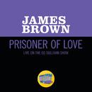 Prisoner Of Love (Live On The Ed Sullivan Show, October 30, 1966)/James Brown