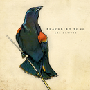 Blackbird Song/Lee DeWyze