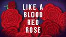 Blood Red Rose (Lyric Video)/Kate Miller-Heidke