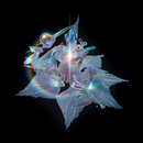The Gate (Edit) (feat. Arca)/Björk