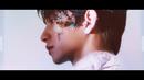 舞い落ちる花びら(Fallin' Flower)/Seventeen