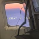 What A Life (Benny Benassi & BB Team Balkanic Remix)/Scarlet Pleasure