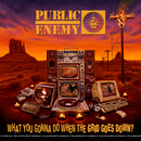 What You Gonna Do When The Grid Goes Down?/Public Enemy