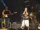 De Cara Pro Mundo (Ao Vivo Em São Paulo / 2005)/Planta E Raiz