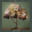 Weird & Talkative (EP)/Sandro Cavazza