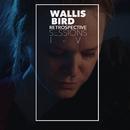 Retrospective Sessions/Wallis Bird