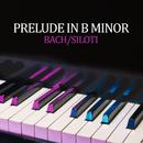 Prelude in B Minor (Transcr. Siloti - Prelude in E Minor BWV 855a)/Valentina Lisitsa